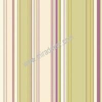 CT58518 Renkli Çizgili Duvar Kağıdı