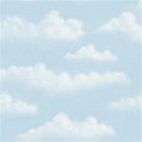 HAS47075 * STOKTA VAR * Bulutlu duvar kağıdı
