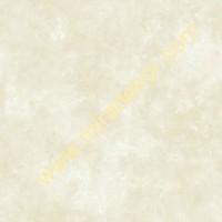 QE14137 patina desenli düz LÜKS AMERİKA duvar kağıdı