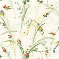 QE19321  Kuşlu Duvar Kağıdı