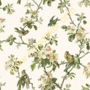 QE58321 kuşlu  çiçekli Lüks Amerika duvar kağıdı